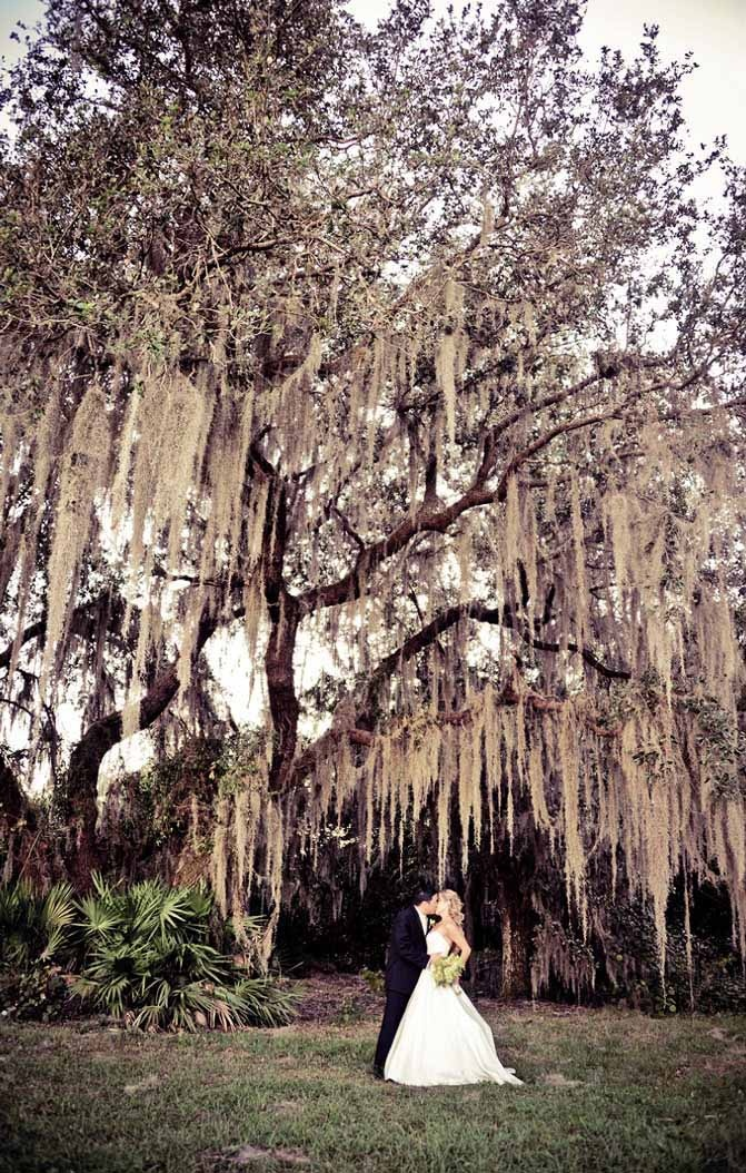 ROYAL-CREST-ROOM-MOSSY-TREE-GALLERY_017